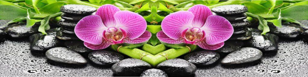 fototapeta_orhideja_kamni_1